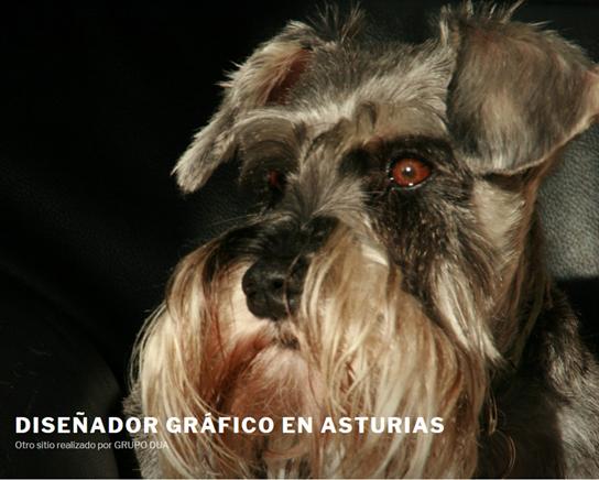 DISEÑADOR GRÁFICO EN ASTURIAS